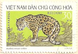 Vietnam-N725-AN238
