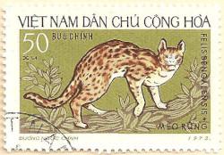 Vietnam-N726-AN238
