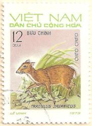 Vietnam-N736-AN239
