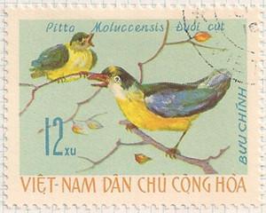 Vietnam-N453-i99