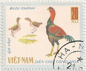 Vietnam-N506-i99