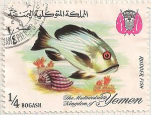 Yemen-R217-i93