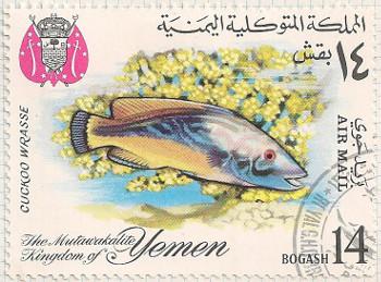 Yemen-R225-i93