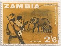 Zambia-104-AF41