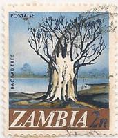 Zambia-130-AF45