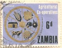 Zambia-125-AN255