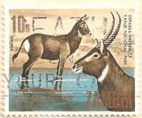 Zambia-148-AN254