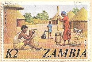 Zambia-239-AN253
