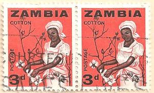 Zambia-97-AN255
