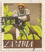 Zambia-134-i86