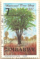 Zimbabwe-607-AN259