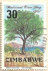 Zimbabwe-609-AN259