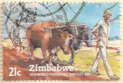 Zimbabwe-626-AN256