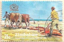 Zimbabwe-627-AN256