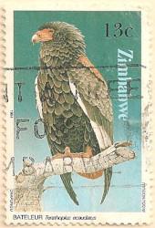 Zimbabwe-649-AN259