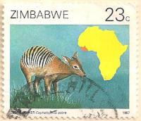 Zimbabwe-719-AN258