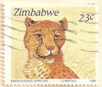 Zimbabwe-763-AN258