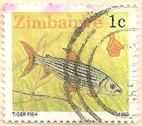 Zimbabwe-768-AN257