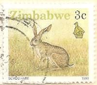 Zimbabwe-770.1-AN257