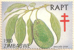 Zimbabwe-RAPT-1980-AN255