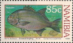 c277-85
