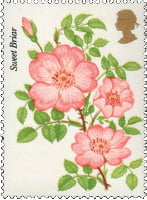 Great Britain Roses Error Stamp